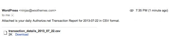 Daily Transaction Report via Email