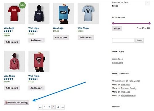 WooCommerce Store Catalog PDF Download in Action