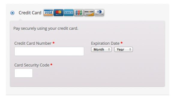 First data payment form